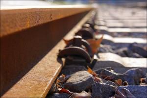Primera piedra en las obras del TAV de California, cuya primera fase podría estar lista en 2029. Foto: Rupert Ganzer.
