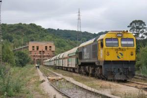 Un tren de mercancías, encabezado por una 319 de Renfe, ya acoplado.