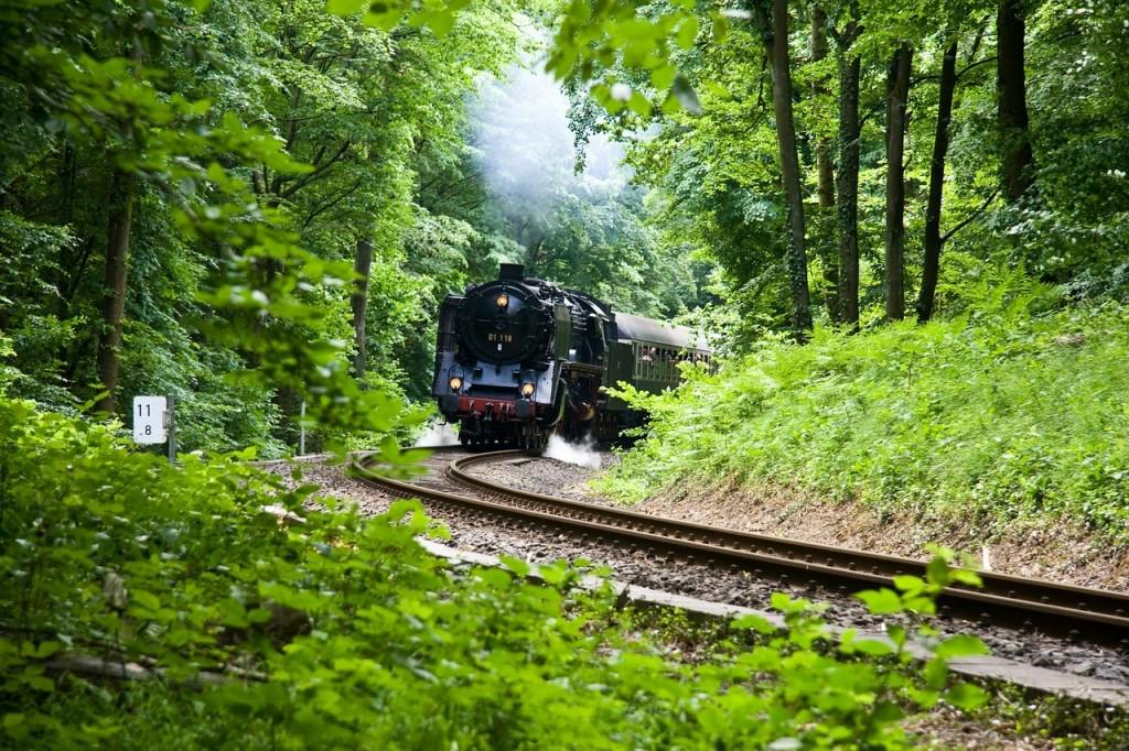 Estrenamos El tren verde, el nuevo apartado de ferrocarril y medio ambiente.