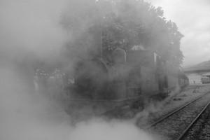 Los viajes en tren histórico son una de las actividades estrella del Museo Vasco del Ferrocarrril. Foto: Daniel Luis Gómez Adenis.