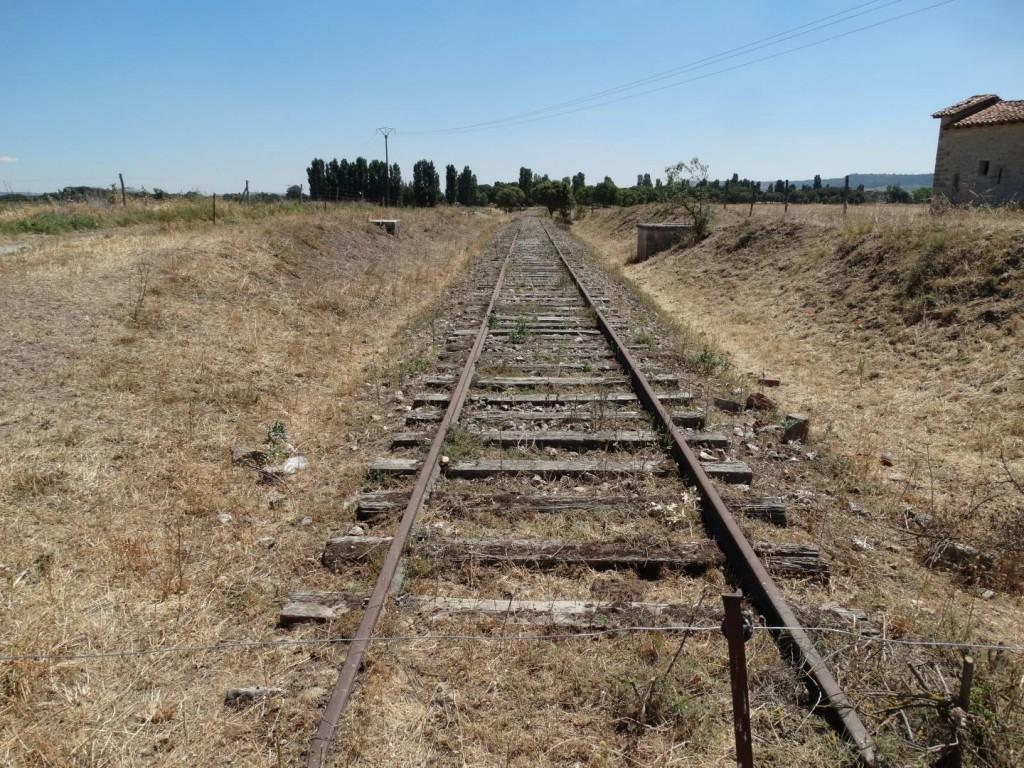 El abandonado ferrocarril Valladolid-Ariza, muy posiblemente a consecuencia de la política de Renfe con sus trenes. Foto: Nicolás Pérez.